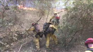 US CA Wildfire Santa Cruz (NR Lon)