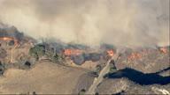 US CA Griffith Park Fire