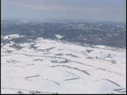 (TT) Japan Ice