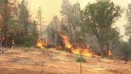 US Wildfire