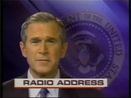 US Bush