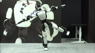 TT Japan Robots
