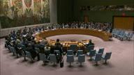 UN Iran 2 (Lon)