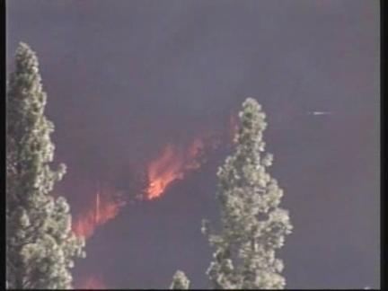 US Bush Fires