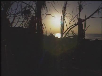 DVS Malibu Fires