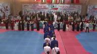 Taekwondo Palestine