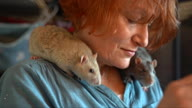 HZ UK Year of the Rat