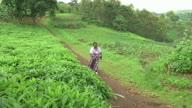 Rwanda Liquid Opioid