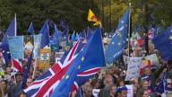 UK Patrick Stewart Brexit March