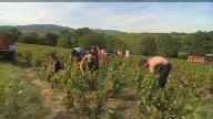 (HZ) France Beaujolais