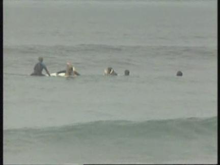 USA: SAN DIEGO: SURFING DOG