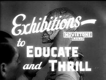 EXHIBITIONS - TO EDUCATE and THRILL