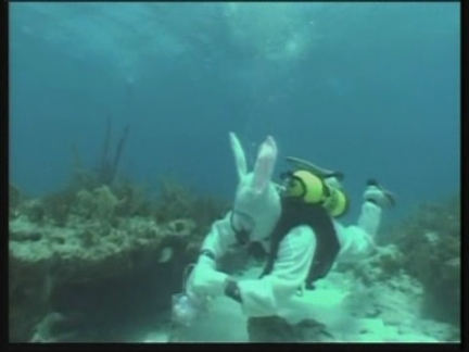 US Easter Diving