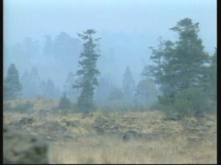 MEXICO: FIREFIGHTERS CONTINUE BATTLE AGAINST FOREST FIRES