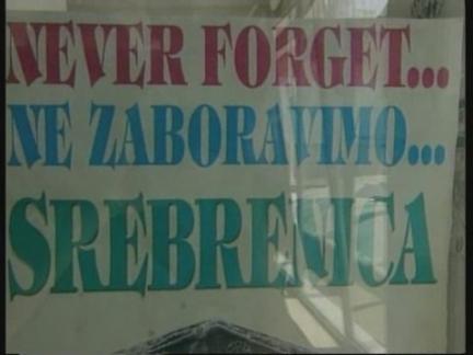 Bosnia Arrest