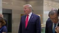 DMZ Trump 3