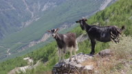 HZ Albania Highlands