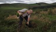 HZ UK Tree Planting