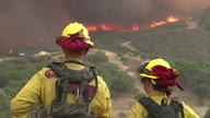 US CA Wildfires Forest Management
