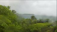 ++Caribbean Hurricane