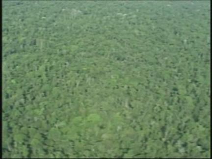 (HZ) Brazil Climate