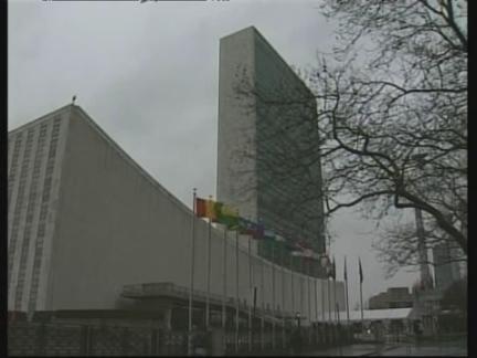 UN Report