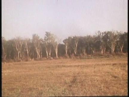 Vietnam Footage Clipreel: Part 7