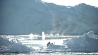 (HZ) Greenland Fishing