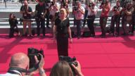 American Honey Cannes Premiere