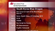 Entertainment South Korea Blue Dragon Awards