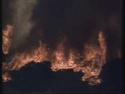 USA: L.A.: FOREST FIRES RAVAGE NATIONAL FOREST