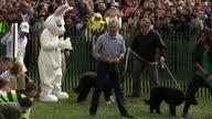 US WH Easter Egg 2 (CR)