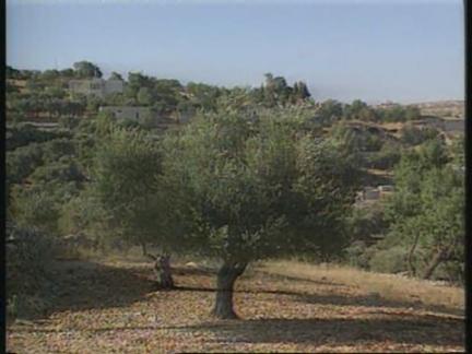 Israel/West Bank - Anger At Killing Of Israelis
