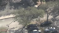 US FL Shooting Witnesses (CR)