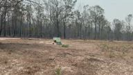 Firefighters Rescue Beehives From Queensland Bushfires