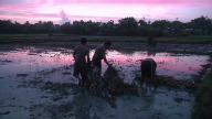 (HZ) Philippines Mud