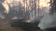 US CA Wildfires San Diego (Lon NR)