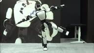 HZ Japan Robots