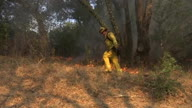 US CA Wildfires Back Burn (Lon NR)
