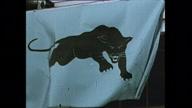 US CA Black Panthers (NR)