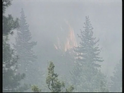 US Forest Fires