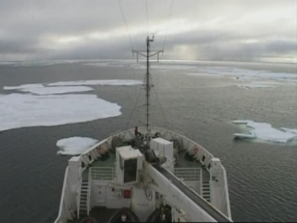 (HZ) Arctic Sea Ice