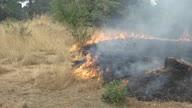US CA California Wildfire Battle