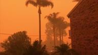 Australia Wildfires UGC