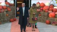 US Trump Halloween