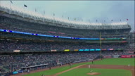 MLB New York Yankees