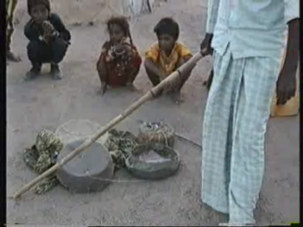 INDIA: VADINAGAR: VILLAGE HOME TO SNAKE CHARMERS FOR GENERATIONS